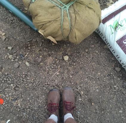 Mundo Verde PCS Truxton Circle tree planting 2015 05 09